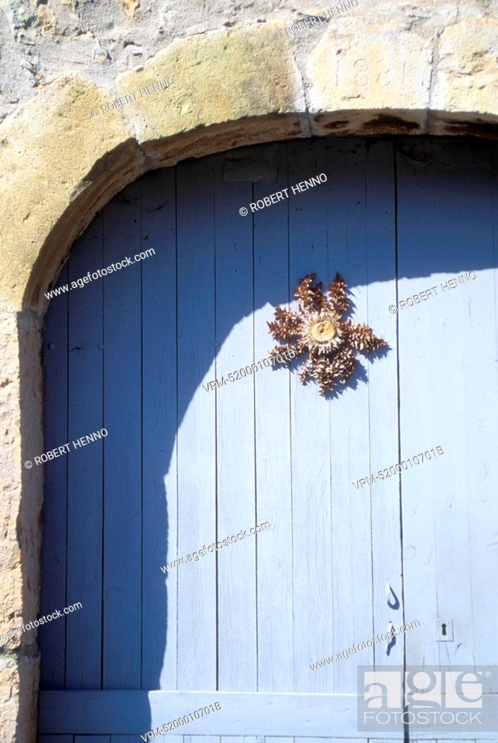 Stock Photo: FRANCE - CEVENNES - GORGES DE LA JONTEDRIED THISTLE ON DOOR AS LUCKY CHARMCARLINE ACAULE - CARLINE DES ALPESCARLINA ACAULISSILVER THISTLE - CARLINE.