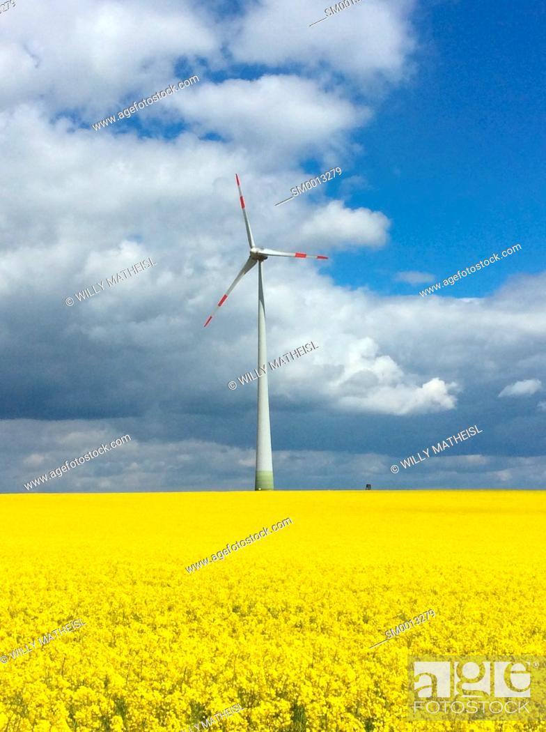 Stock Photo: single wind generator in yellow rape field, Bavaria, Germany, Europe.
