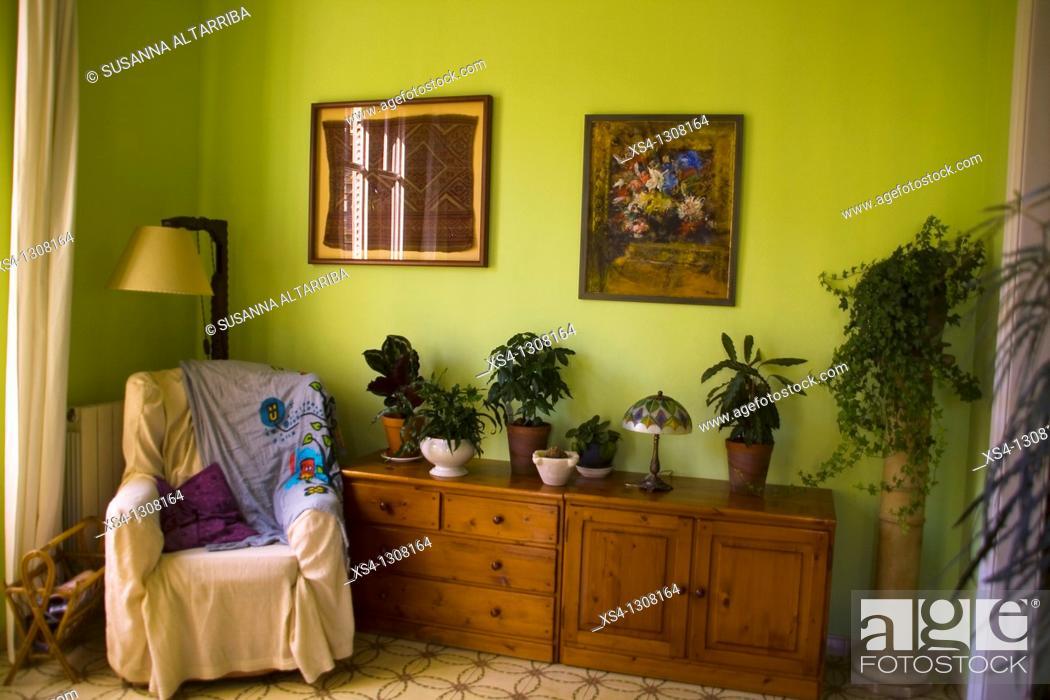 Stock Photo: Corner decorated with plants.