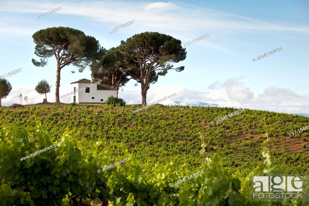 Stock Photo: Small white building on a hill amongst pine trees along the Camino de Santiago near the village of Villafranca del Bierzo.