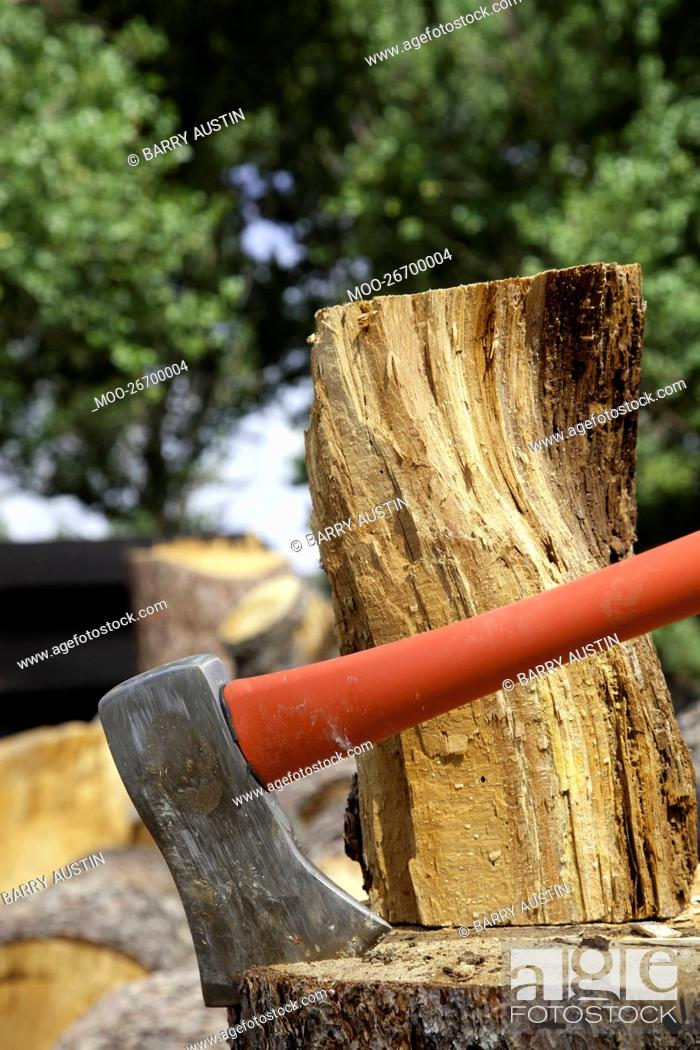 Stock Photo: Close-up of axe wedged into tree stump.