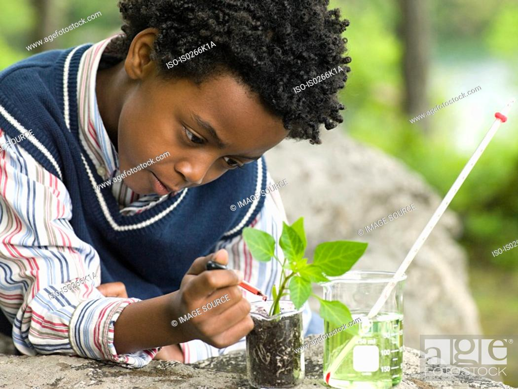 Stock Photo: A boy doing an experiment on a plant.