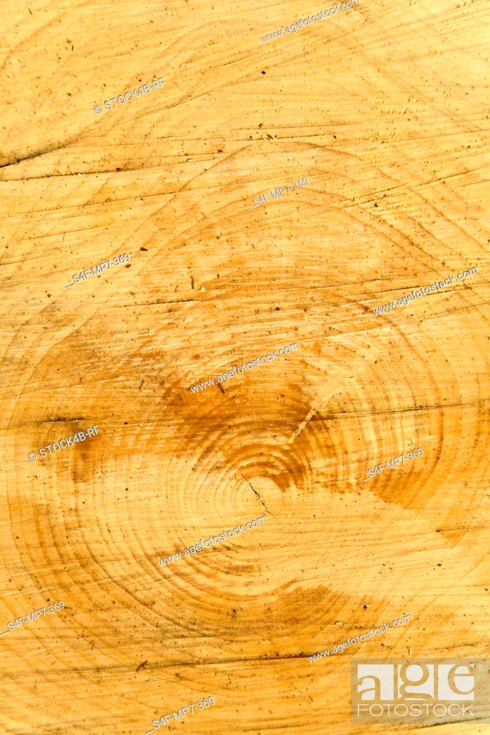 Stock Photo: Detail of a log.
