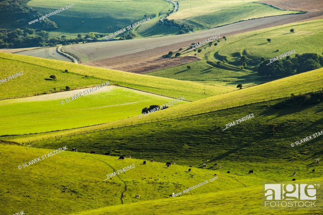 Stock Photo: Late summer in South Downs National Park near Brighton, East Sussex, England.