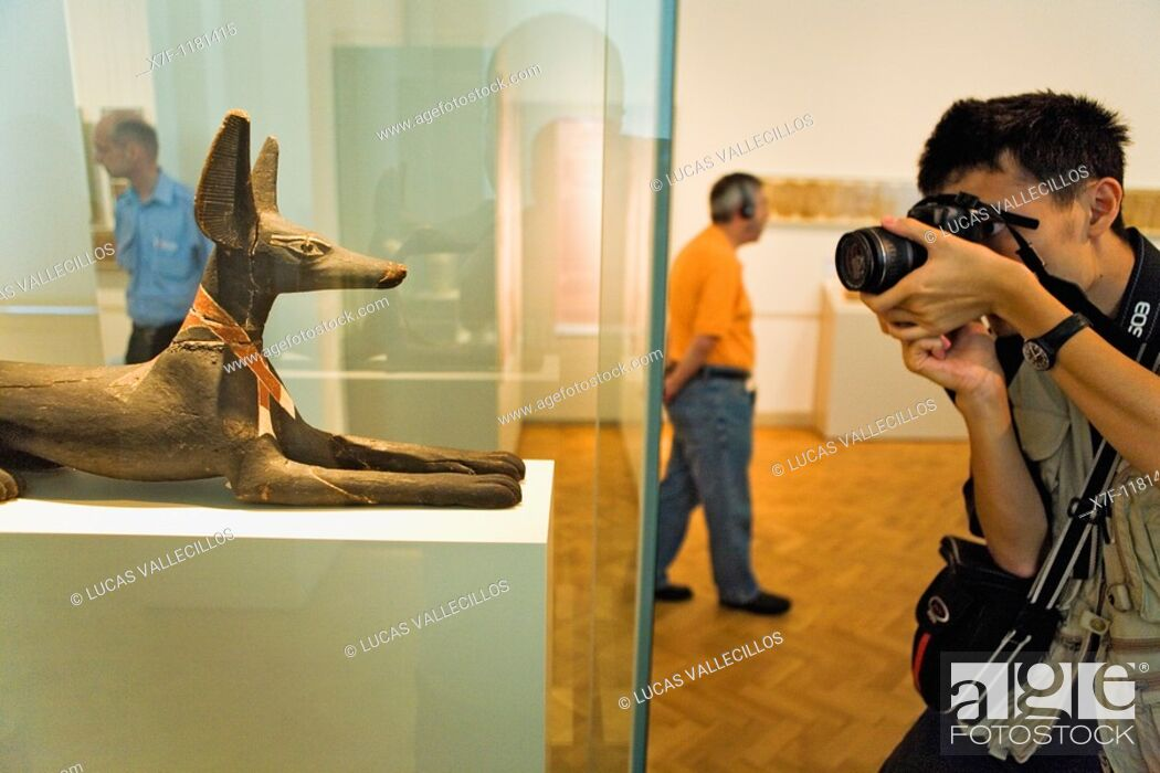 Stock Photo: Museum Island Neues Museum  Figure of reclining jackal 600 aDC Egyptian art  Berlin  Germany.