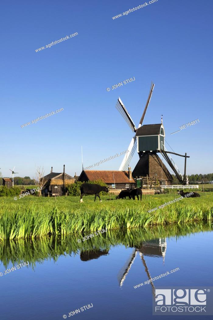 Stock Photo: Windmill the Wingerdse Molen close to the Dutch village Bleskensgraaf seen on a clear and crisp day in spring.
