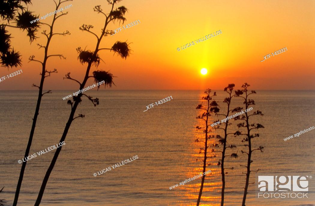 Stock Photo: San José Beach of San José Cabo de Gata-Nijar Natural Park  Biosphere Reserve, Almeria province, Andalucia, Spain.