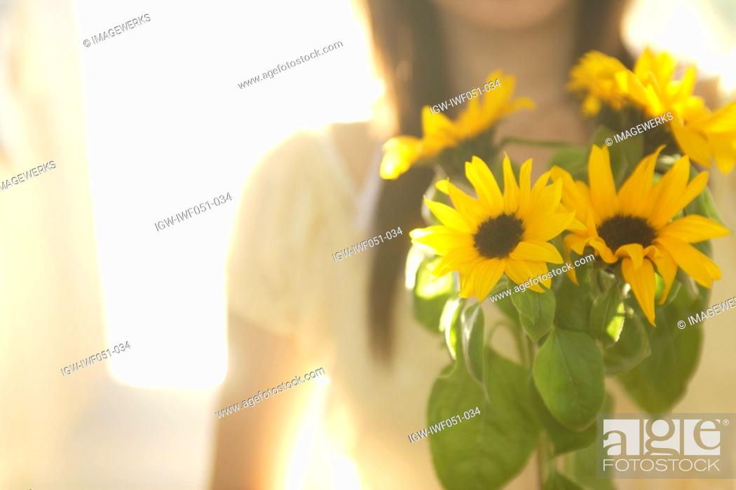 Stock Photo: Flower with teenage girl 14-15 in background, close-up.
