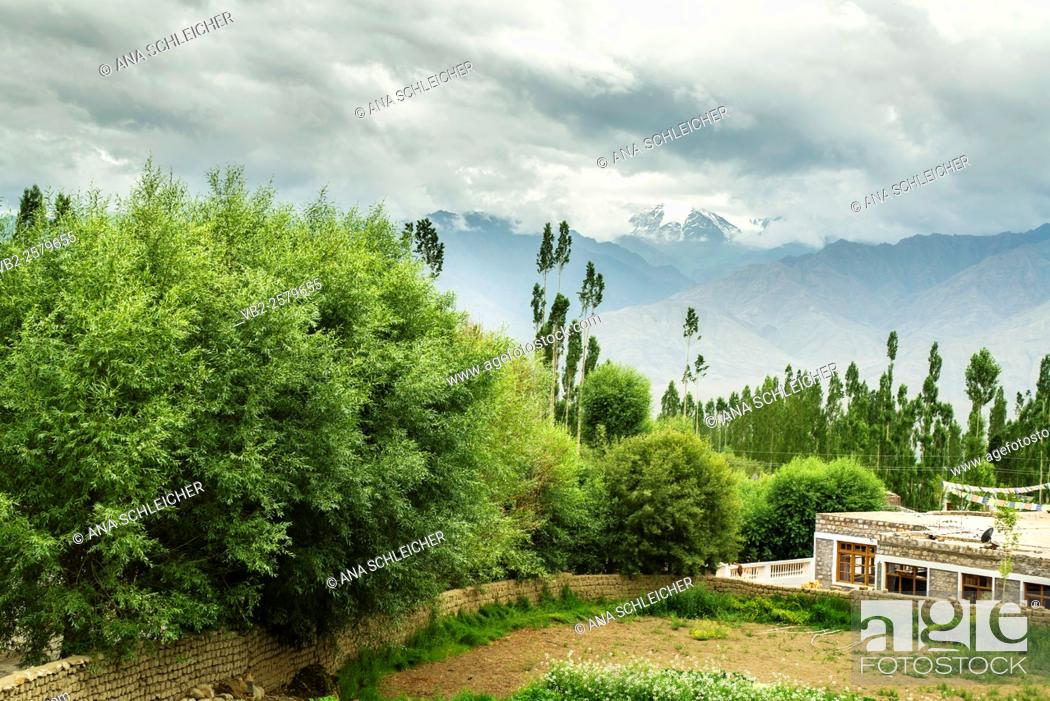 Stock Photo: Views from a guesthouse in Leh nearby Sankar Gompa. Traditional family houses have a private vegetable garden. Ladakh's landscape combines barren mountains with.