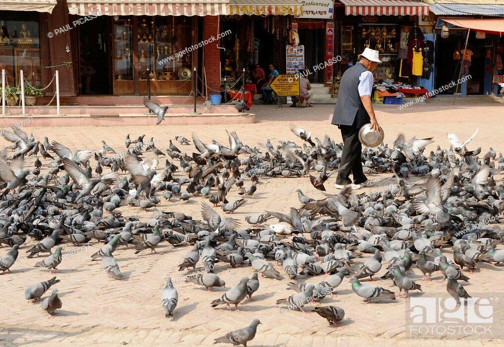 Stock Photo: nepalese man feeding pigeons, boudhanath , one of the holiest Buddhist sites in Kathmandu , Nepal.