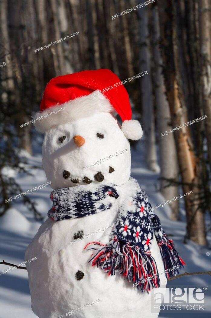 Stock Photo: Snowman in santa hat & scarf deep in birch forest interior Alaska Winter.