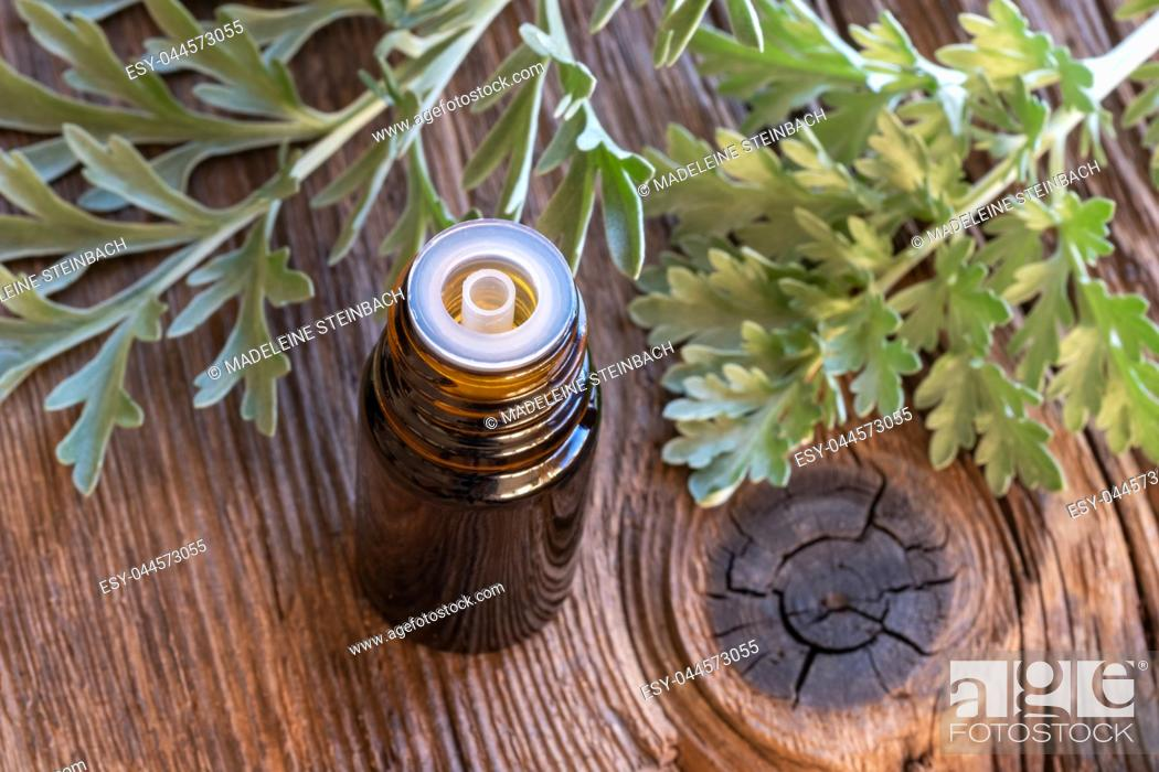 Stock Photo: A bottle of wormwood essential oil with fresh Artemisia Absinthium twigs.