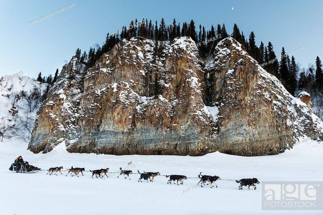 Imagen: Nathan Schroeder runs down the Yukon river shortly after leaving the Ruby checkpoint during the Iditarod Sled Dog Race 2014.