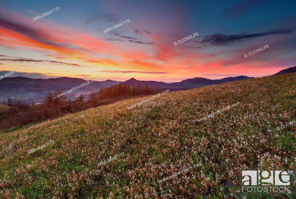 Stock Photo: Lombardy, Italy. A spring sunset over the hills of Oltrepò Pavese.