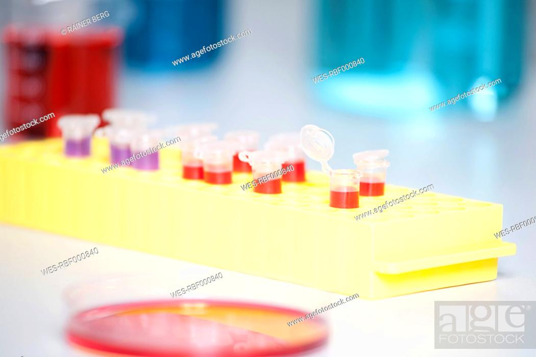 Stock Photo: Germany, Bavaria, Munich, Test tubes and petri dishes for medical research in laboratory.