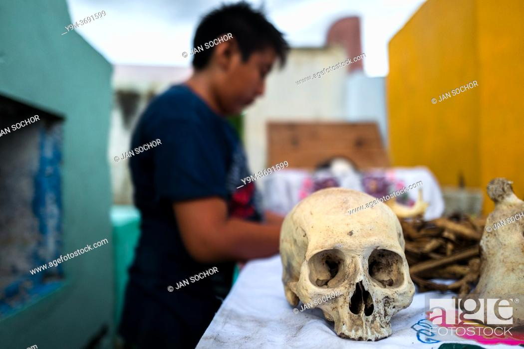 Stock Photo: POMUCH, MEXICO - OCTOBER 28: A Mayan boy cleans dried-up bones of a deceased family member during the bone cleansing ritual at the cemetery on October 28.