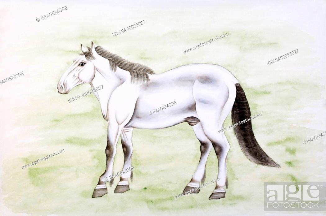 Chinese Fine Art Traditional Chinese Painting Year Of The Horse Stock Photo Picture And Royalty Free Image Pic Igm 9a00035027 Agefotostock