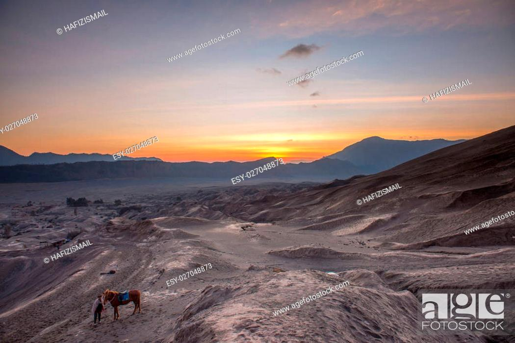 Stock Photo: Horse and Handler at Sunrise in the desert.