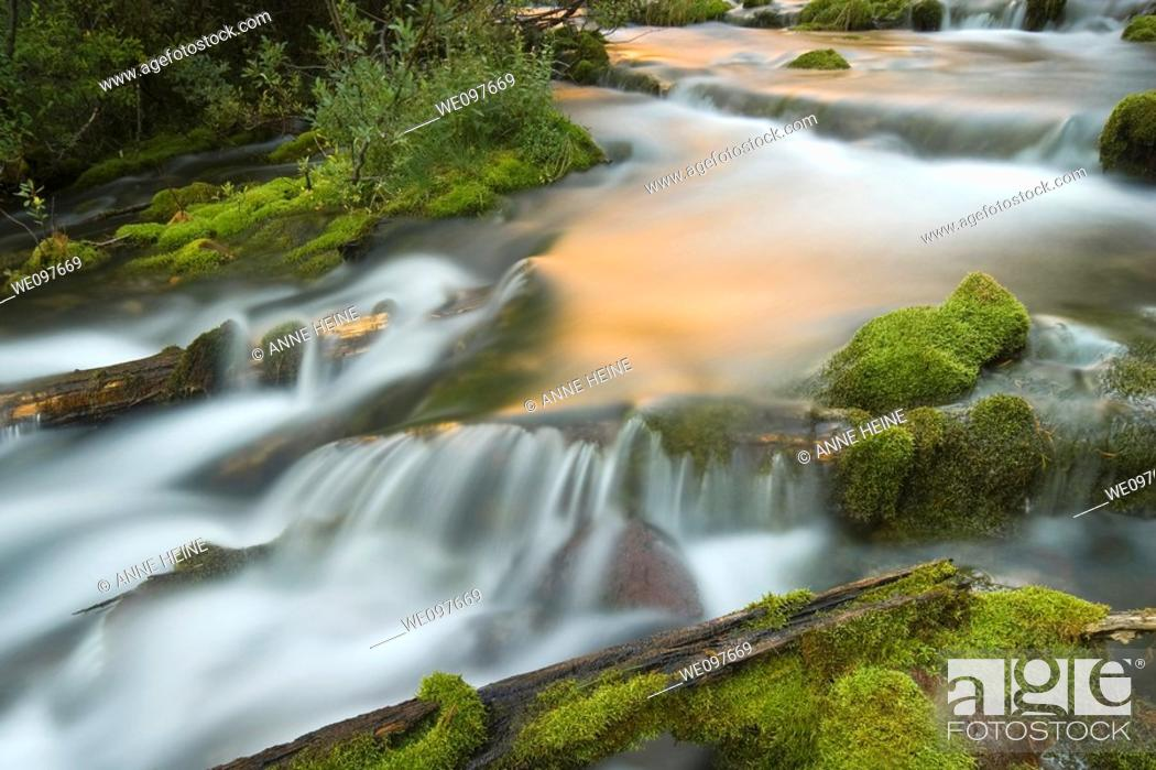 Stock Photo: long exposure of natural creek,flowing water.