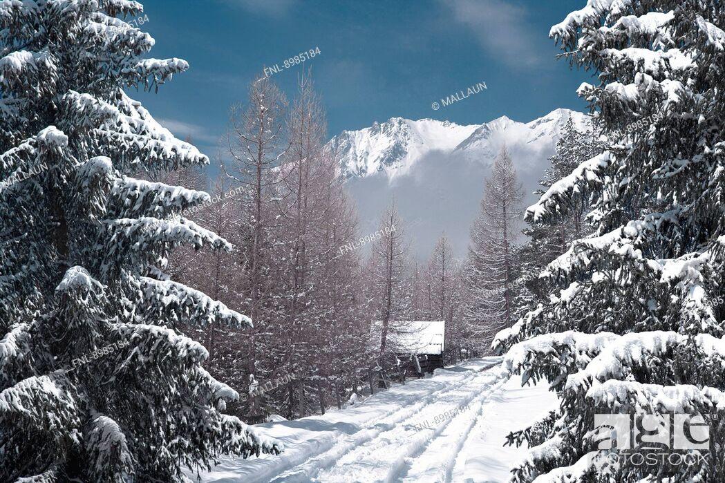 Stock Photo: Winter landscape at Mieminger Plateau, Tyrol, Austria.