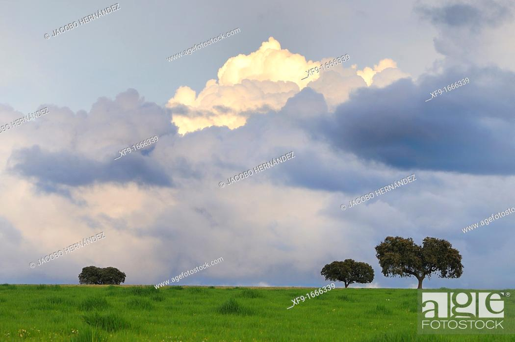 Stock Photo: Storm clouds Alentejo Portugal.