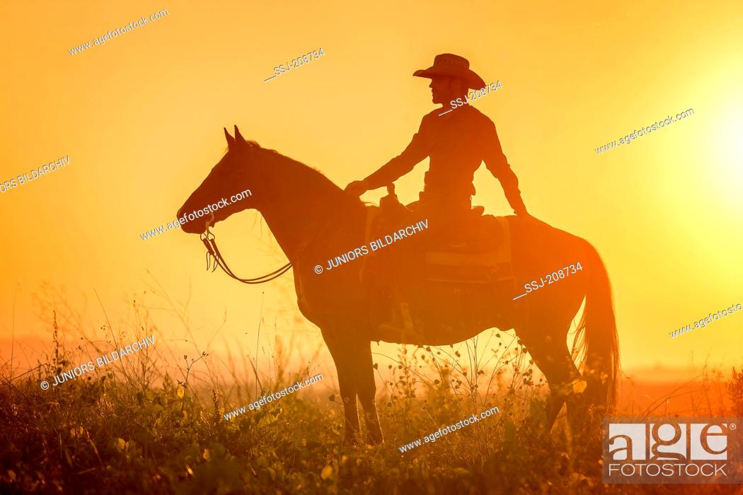American Quarter Horse Rider On Standing Western Horse Silhouetted Against A Colorful Evening Sky Stock Photo Picture And Rights Managed Image Pic Ssj 208734 Agefotostock