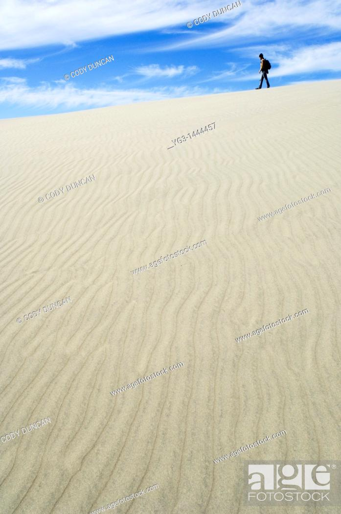 Stock Photo: Walking among sand dunes at Farewell Spit, New Zealand.