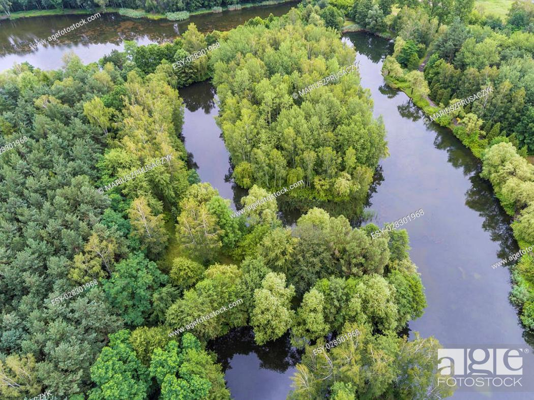 Stock Photo: Summer landscape. Green trees at riverbank in Poland.