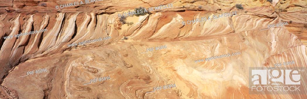Stock Photo: The Wave Navajo Sandstone Formation Vermilion Cliffs Wilderness AZ.