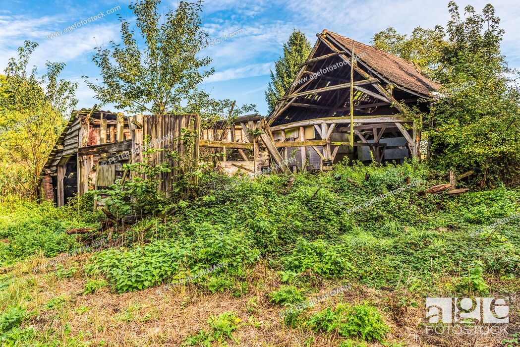Stock Photo: Wouwse Plantage - Netherlands - Abended house in the forrsest.