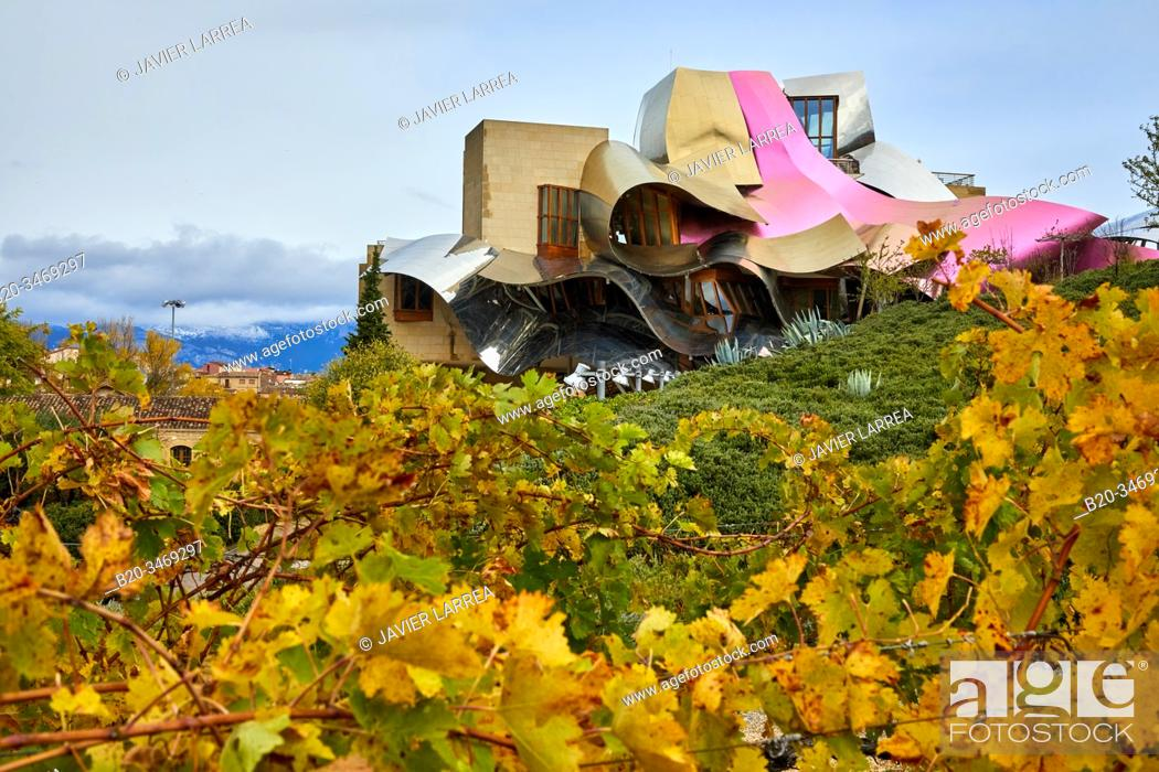 Stock Photo: Vineyards in autumn, The City of Wine, Marques de Riscal winery, building by Frank O. Gehry, Elciego, Alava, Rioja Alavesa, Basque Country, Spain, Europe.