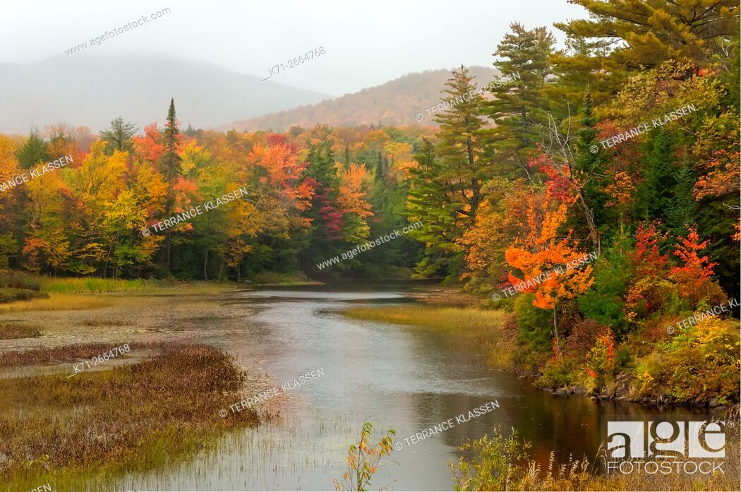 Imagen: A small stream in the Adirondack Mountains with fall foliage color in New York State, USA.