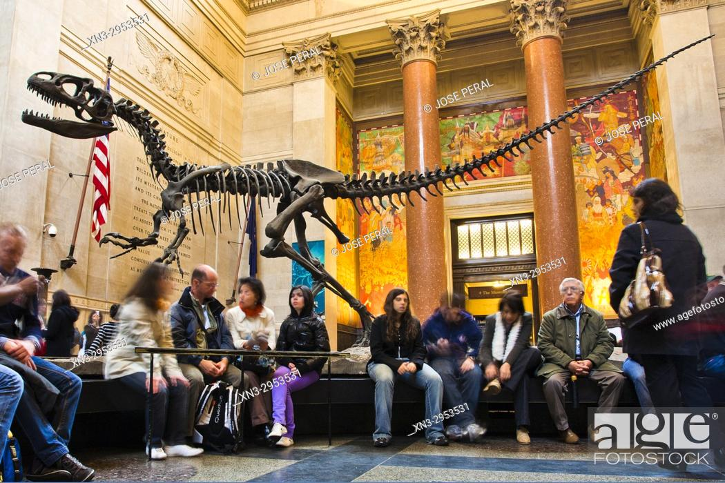 Imagen: Allosaurus mounted skeleton, theropod dinosaur, Theodore Roosevelt Rotunda, entrance lobby, American Museum of Natural History, Upper West Side.