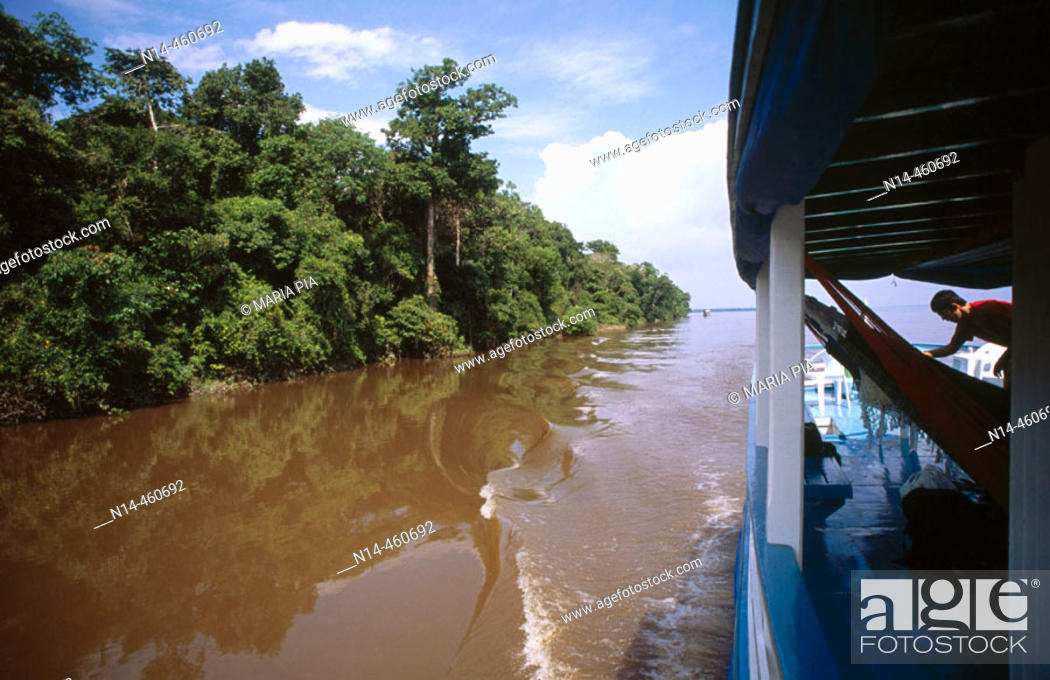 Stock Photo: Rio Negro, Amazon. Brazil, 2005.