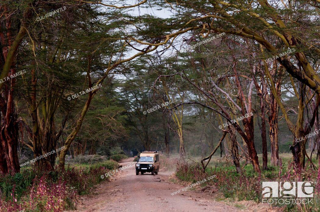 Stock Photo: Safari vehicle, Lake Nakuru National Park, Kenya.