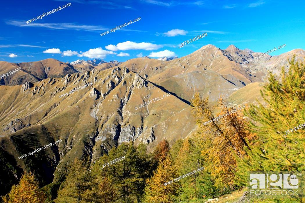 Stock Photo: L'Authion, Mercantour National Park, Alpes-Maritimes, France.