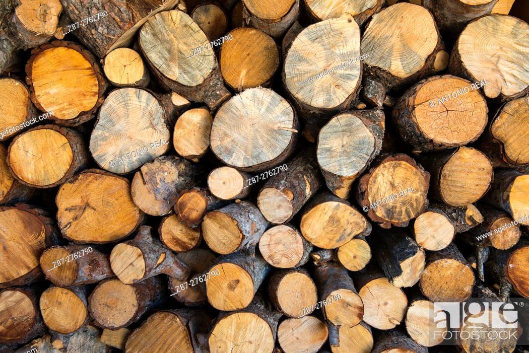Photo de stock: Pine logs, firewood. Almansa, Albacete province, Castilla-La Mancha, Spain.