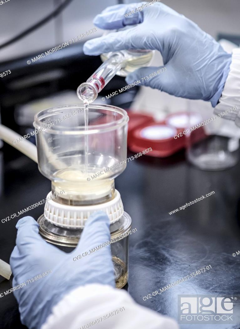 Imagen: Bioscience research in a laboratory.