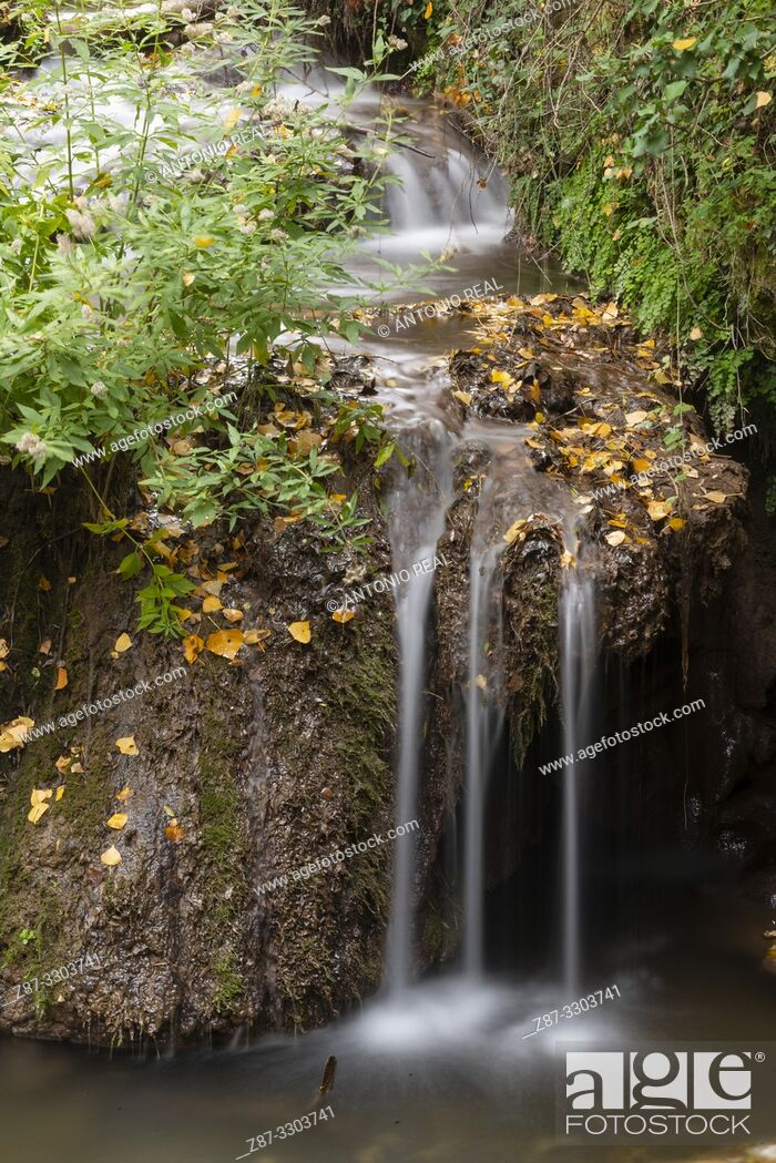 Imagen: Waterfalls in Río Dulce. Aragosa. Parque Natural Barranco del Río Dulce. Guadalajara Province, Castile-La Mancha, Spain.