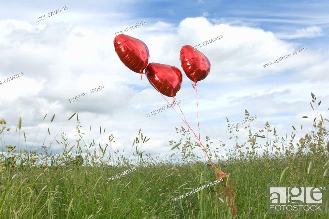 Stock Photo: Heart shaped balloons in field.