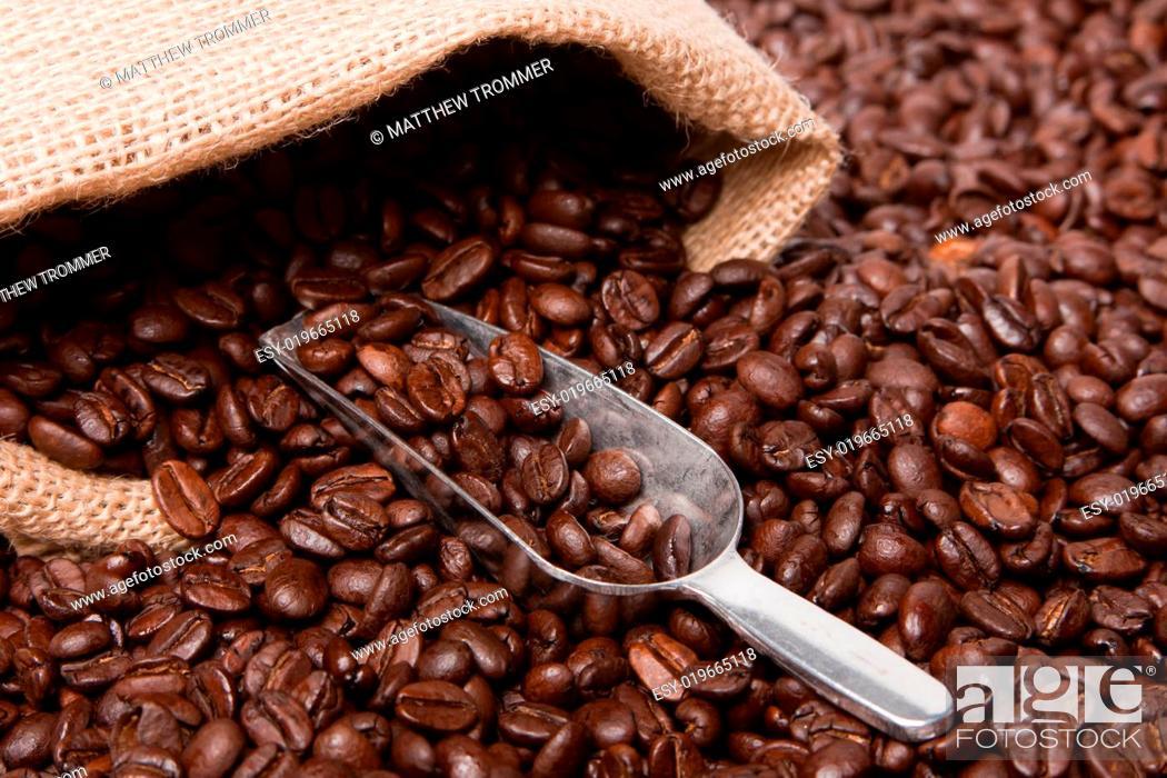 Stock Photo: Coffee Beans with Burlap Sack.