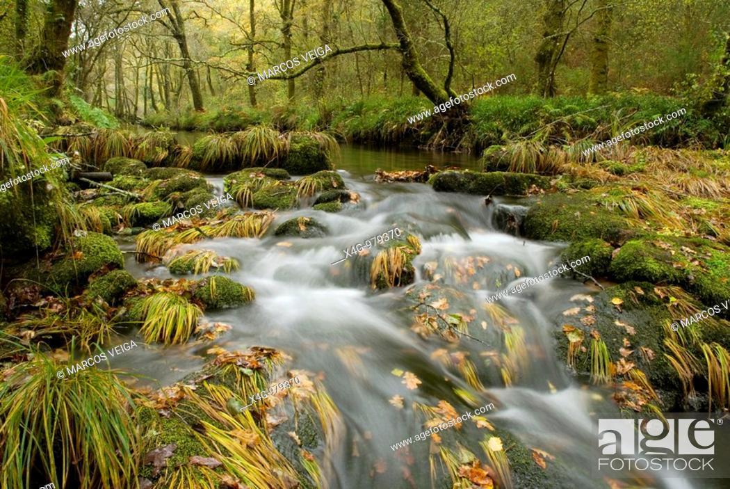 Stock Photo: Paisaje otoñal en el río Barragán, Autumnal landscape of river Barragán, Pontevedra, Galicia, España.