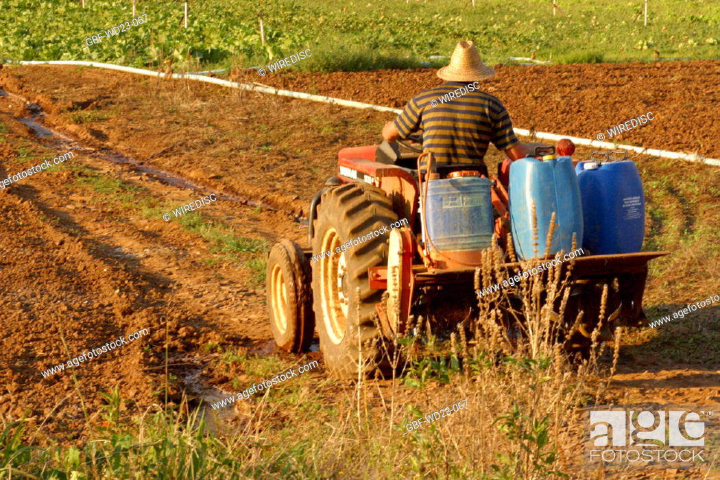 Stock Photo: People, man, tractor, plantations, agriculture, Brazil.