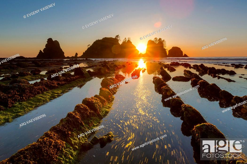 Stock Photo: Sunset At Shi Shi Beach, Olympic National Park, Washington, Usa.