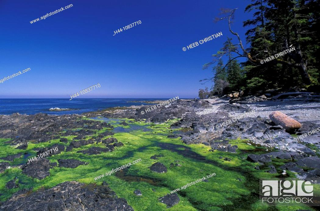 Stock Photo: Canada, North America, America, Scudder Point, Burnaby Island, Gwaii Haanas, national park, Queen Charlotte Islands, B.