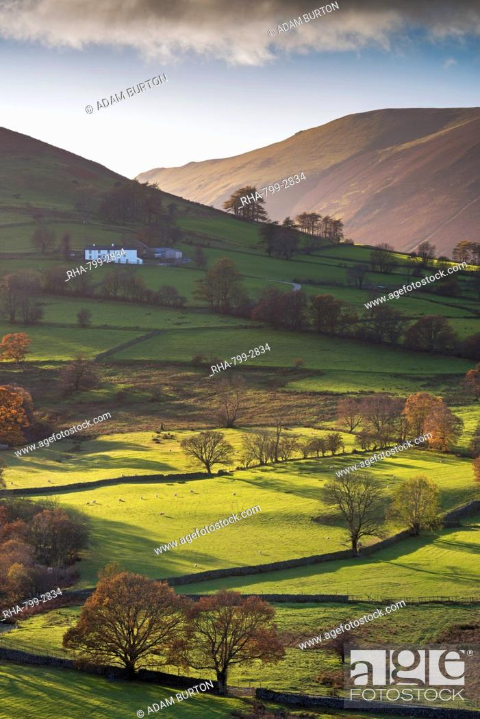 Stock Photo: High Snab farmhouse in the beautiful Newlands Valley in autumn, Lake District National Park, Cumbria, England, United Kingdom, Europe.