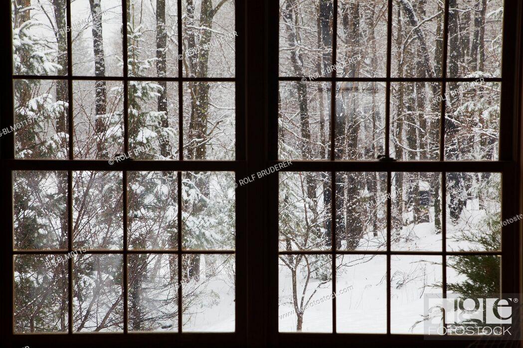 Imagen: Winter scene outside window.