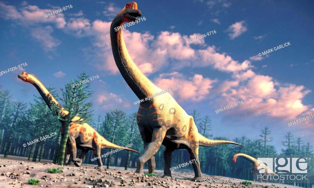 Stock Photo: Brachiosaurus was a herbivorous dinosaur that lived roughly 150 million years ago during the Jurassic Period. One of the largest known species of sauropod – the.