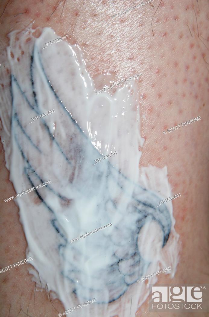 Bepanthen Tattoo Cream Bepanthen For Tattoo Guide Best