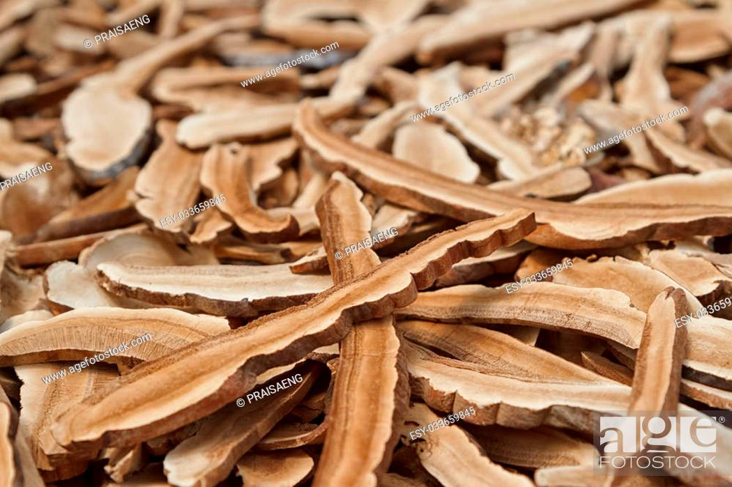 Stock Photo: Reishi mushroom, Dry mushroom for herbal medicine.